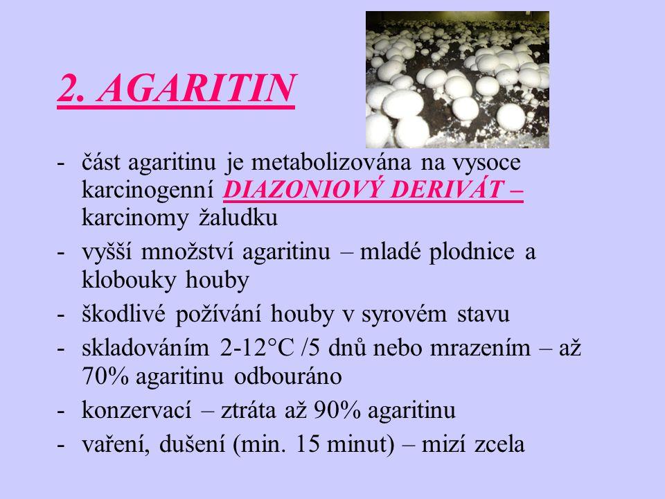 2. AGARITIN část agaritinu je metabolizována na vysoce karcinogenní DIAZONIOVÝ DERIVÁT – karcinomy žaludku.