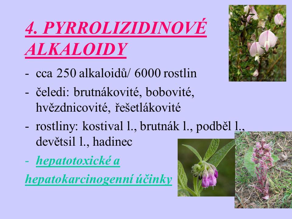 4. PYRROLIZIDINOVÉ ALKALOIDY