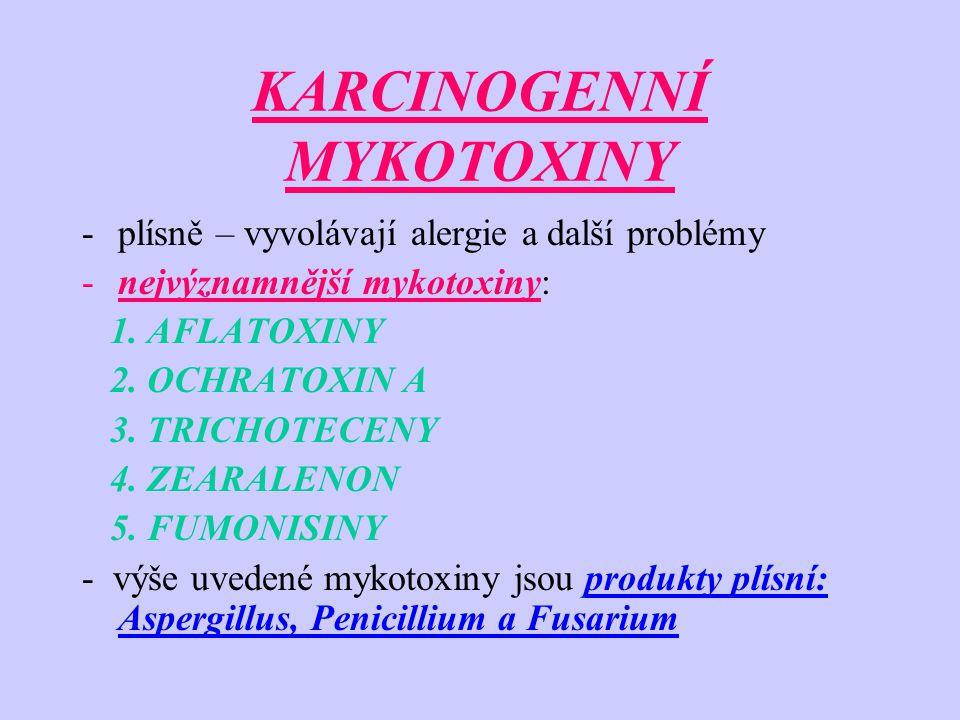KARCINOGENNÍ MYKOTOXINY