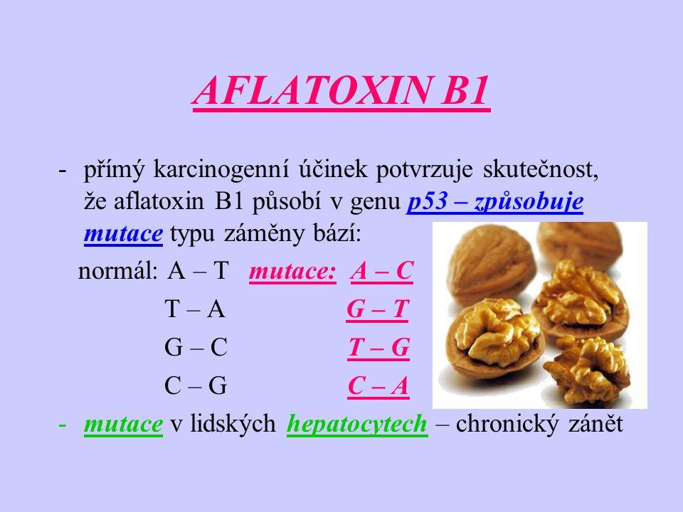 AFLATOXIN B1 přímý karcinogenní účinek potvrzuje skutečnost, že aflatoxin B1 působí v genu p53 – způsobuje mutace typu záměny bází: