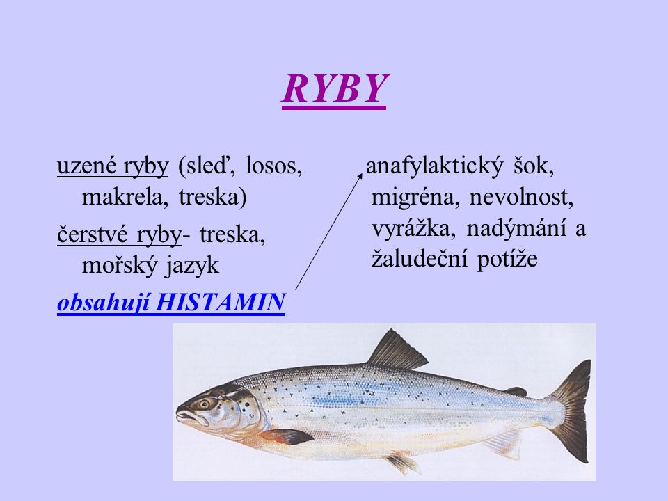 RYBY uzené ryby (sleď, losos, makrela, treska)