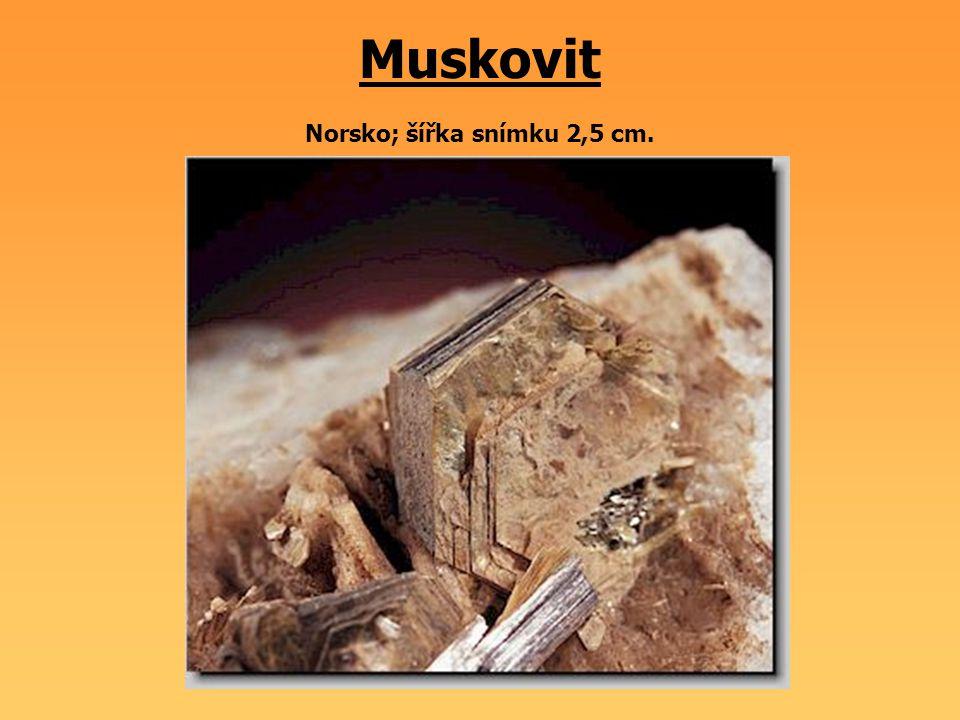 Muskovit Norsko; šířka snímku 2,5 cm.