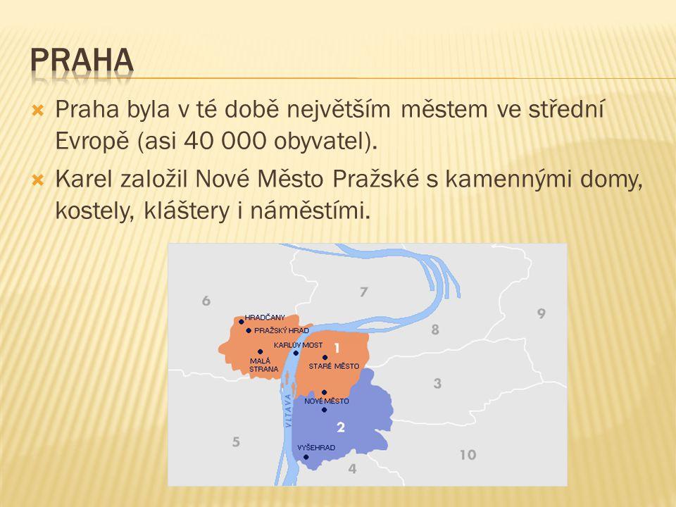 Praha Praha byla v té době největším městem ve střední Evropě (asi 40 000 obyvatel).