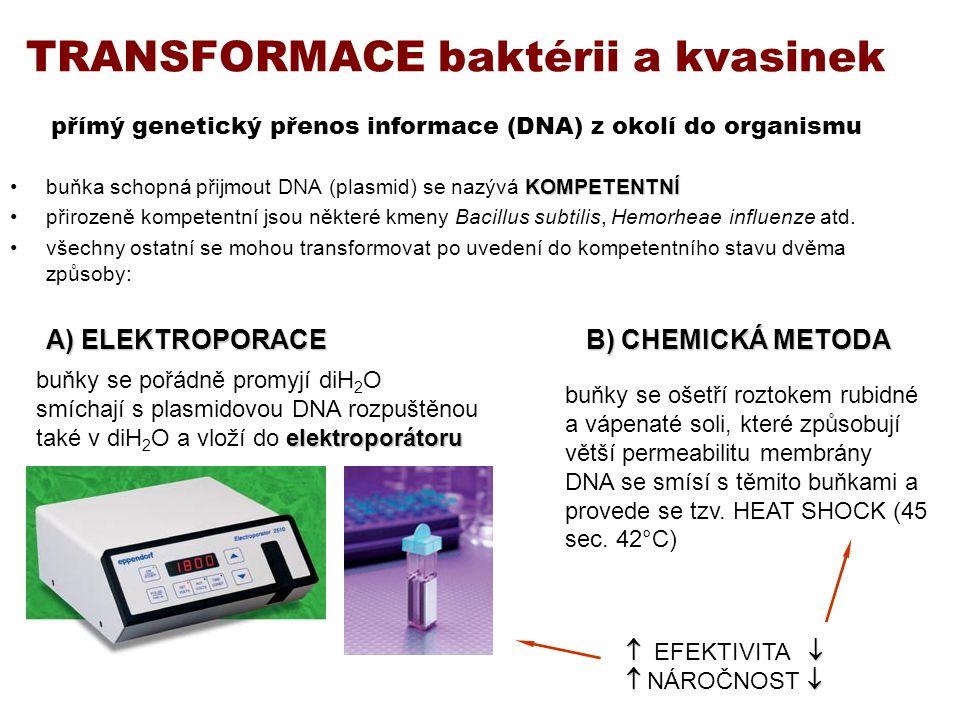 TRANSFORMACE baktérii a kvasinek přímý genetický přenos informace (DNA) z okolí do organismu