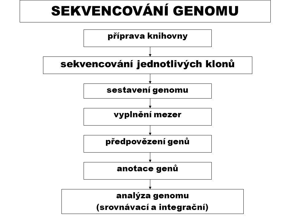 sekvencování jednotlivých klonů (srovnávací a integrační)