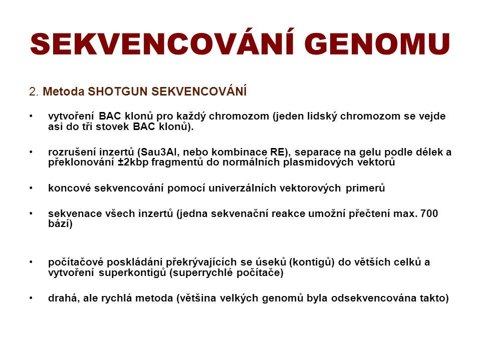 SEKVENCOVÁNÍ GENOMU 2. Metoda SHOTGUN SEKVENCOVÁNÍ