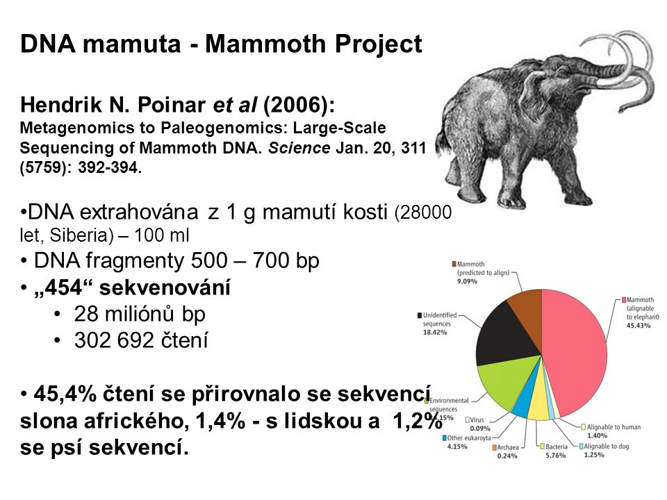 DNA mamuta - Mammoth Project