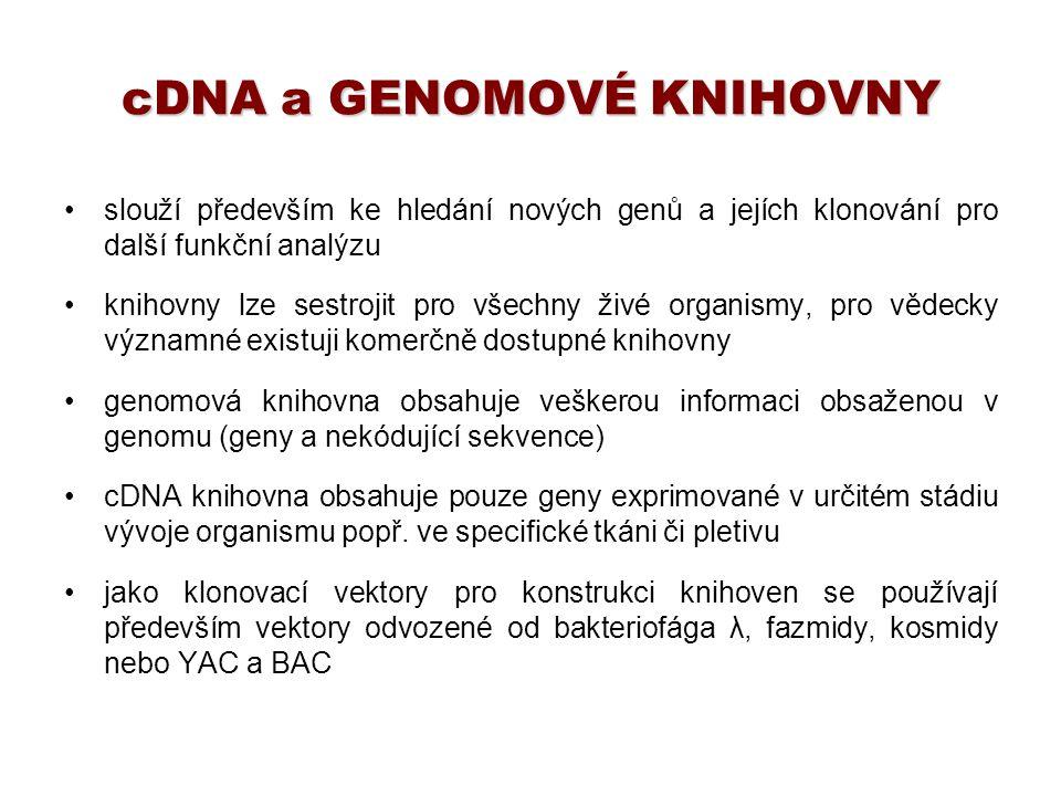 cDNA a GENOMOVÉ KNIHOVNY