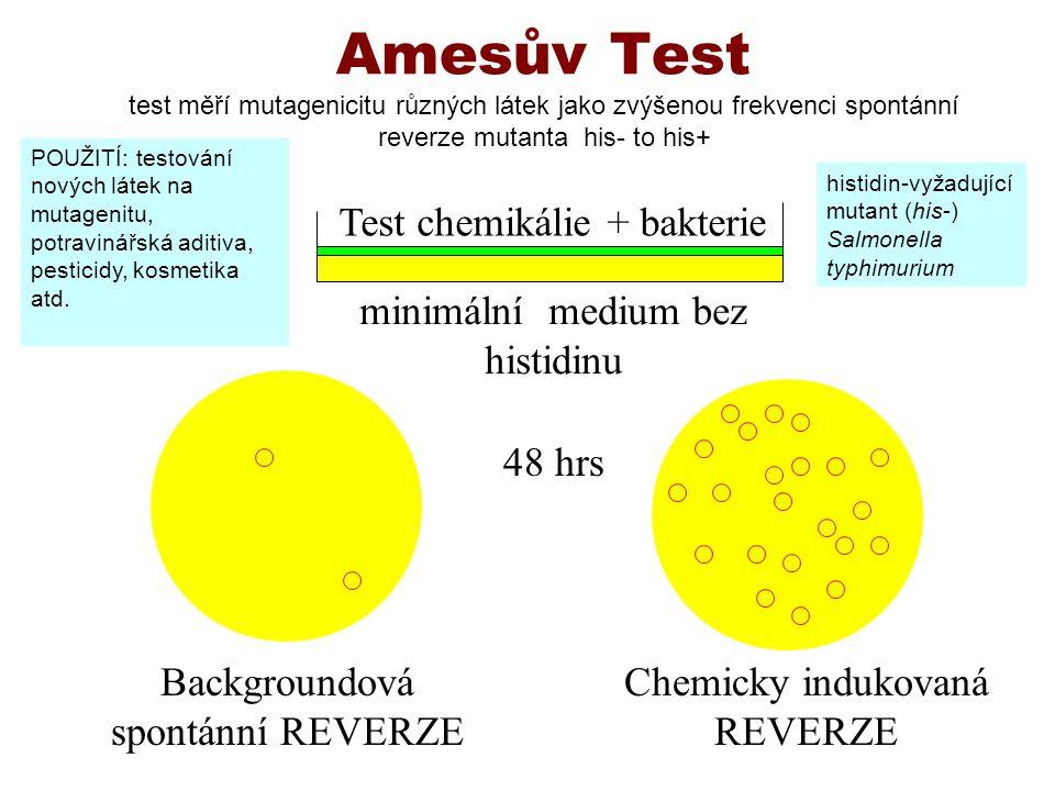 Amesův Test test měří mutagenicitu různých látek jako zvýšenou frekvenci spontánní reverze mutanta his- to his+