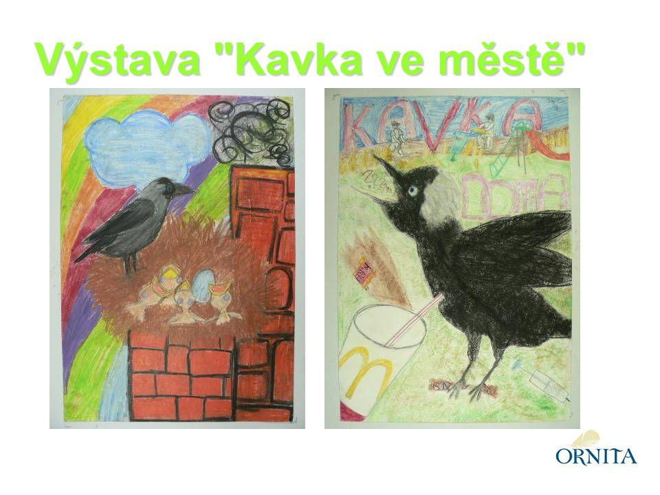 Výstava Kavka ve městě