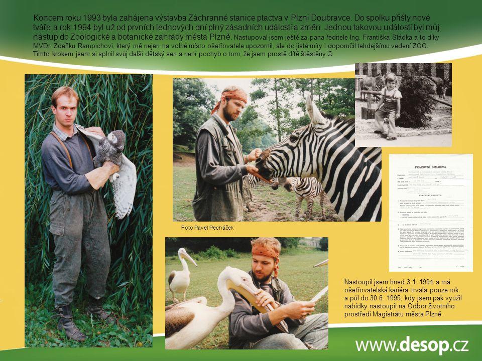 Koncem roku 1993 byla zahájena výstavba Záchranné stanice ptactva v Plzni Doubravce. Do spolku přišly nové tváře a rok 1994 byl už od prvních lednových dní plný zásadních událostí a změn. Jednou takovou událostí byl můj nástup do Zoologické a botanické zahrady města Plzně. Nastupoval jsem ještě za pana ředitele Ing. Františka Sládka a to díky MVDr. Zdeňku Rampichovi, který mě nejen na volné místo ošetřovatele upozornil, ale do jisté míry i doporučil tehdejšímu vedení ZOO. Tímto krokem jsem si splnil svůj další dětský sen a není pochyb o tom, že jsem prostě dítě štěstěny 