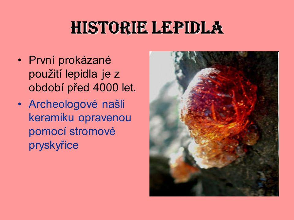 HISTORIE LEPIDLA První prokázané použití lepidla je z období před 4000 let.