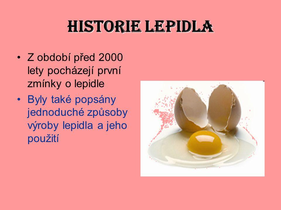HISTORIE LEPIDLA Z období před 2000 lety pocházejí první zmínky o lepidle.