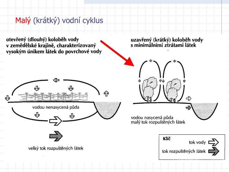 Malý (krátký) vodní cyklus