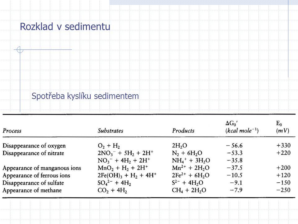 Rozklad v sedimentu Spotřeba kyslíku sedimentem