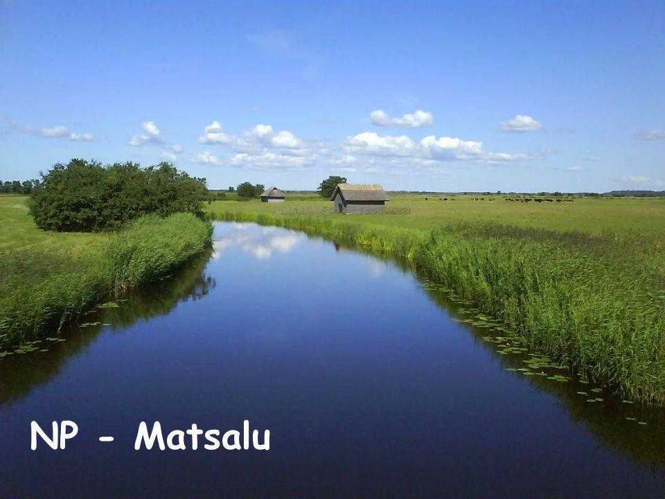 NP - Matsalu