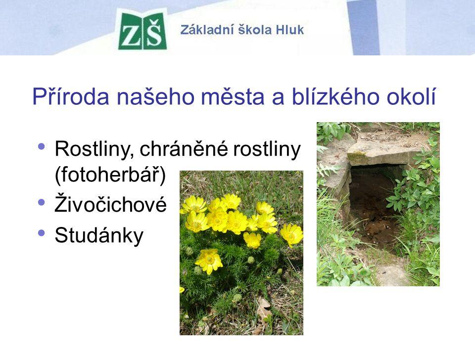 Příroda našeho města a blízkého okolí