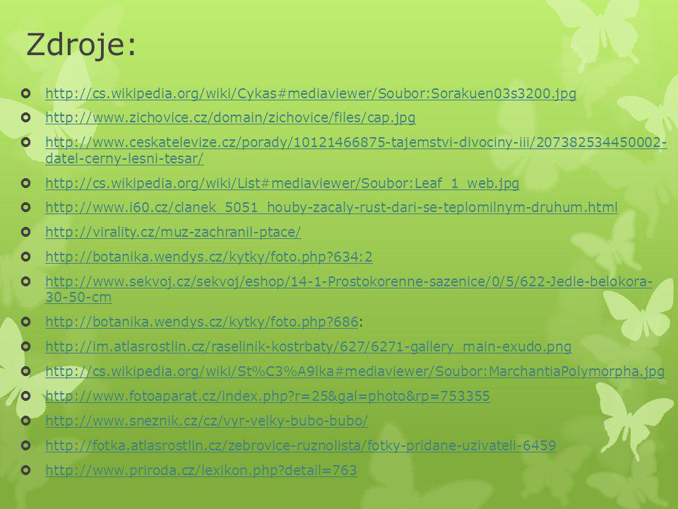 Zdroje: http://cs.wikipedia.org/wiki/Cykas#mediaviewer/Soubor:Sorakuen03s3200.jpg. http://www.zichovice.cz/domain/zichovice/files/cap.jpg.