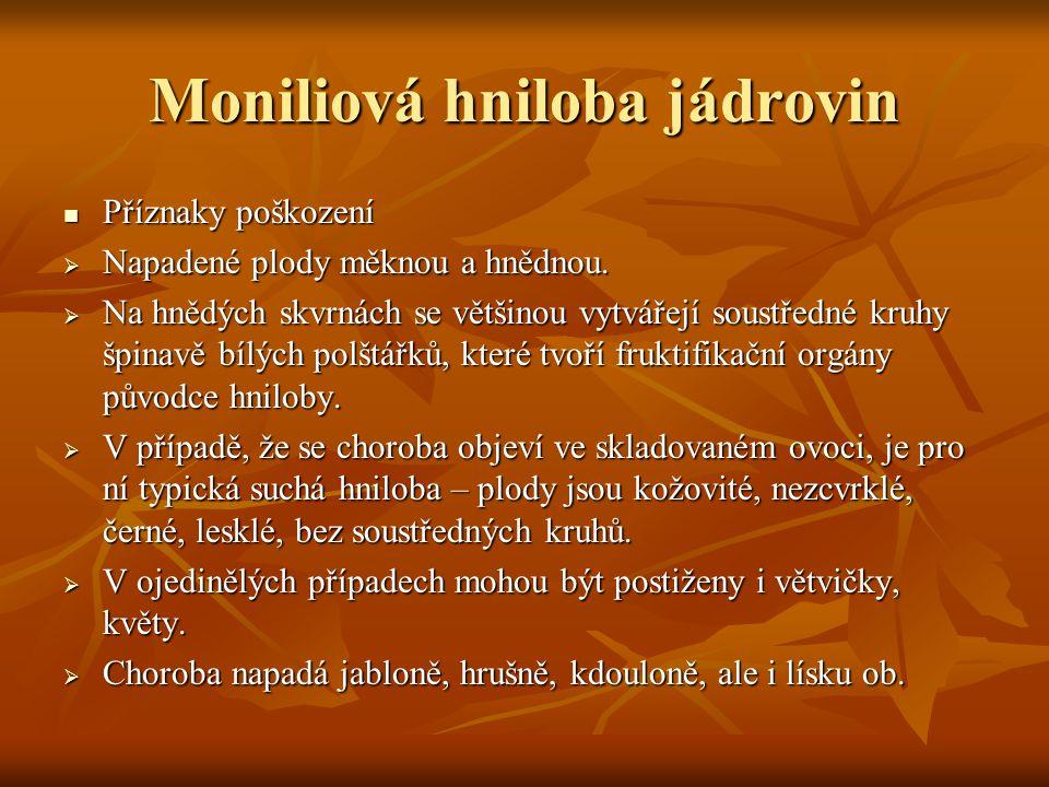 Moniliová hniloba jádrovin