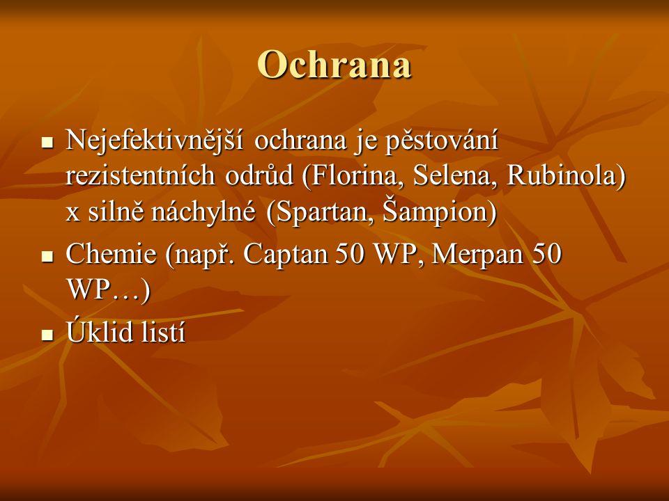 Ochrana Nejefektivnější ochrana je pěstování rezistentních odrůd (Florina, Selena, Rubinola) x silně náchylné (Spartan, Šampion)