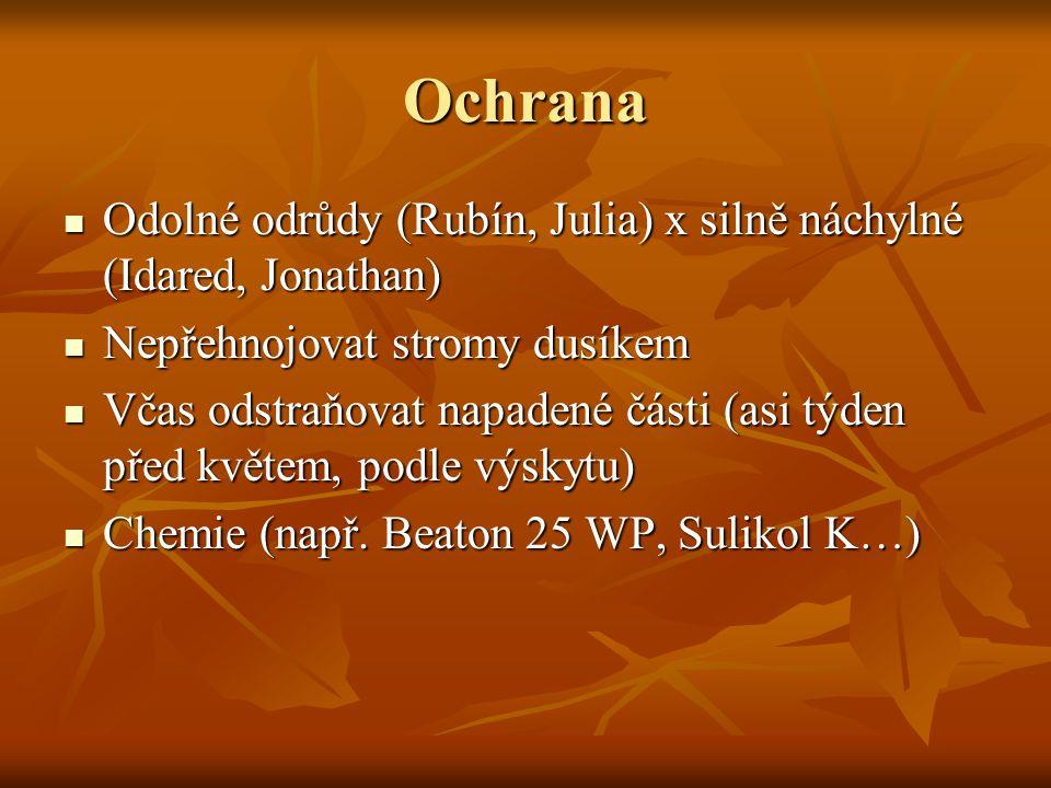 Ochrana Odolné odrůdy (Rubín, Julia) x silně náchylné (Idared, Jonathan) Nepřehnojovat stromy dusíkem.