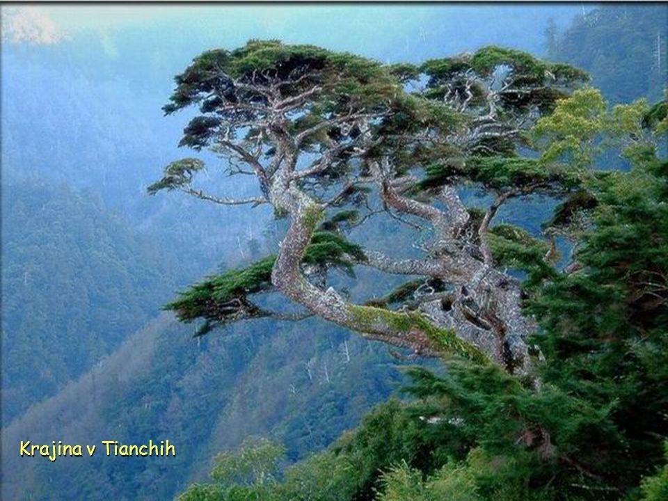 Krajina v Tianchih
