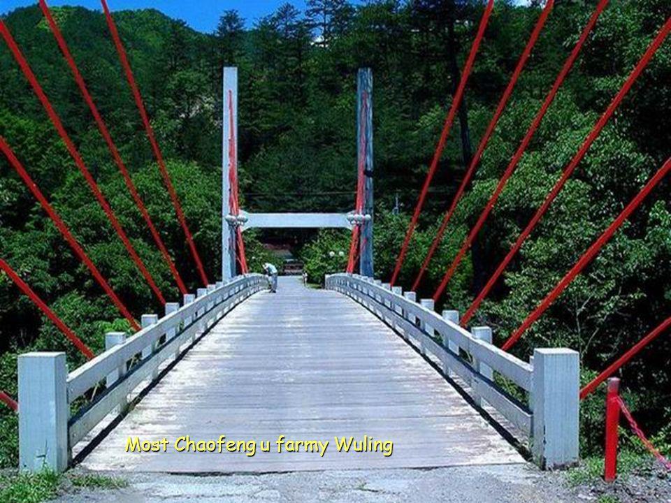 Most Chaofeng u farmy Wuling