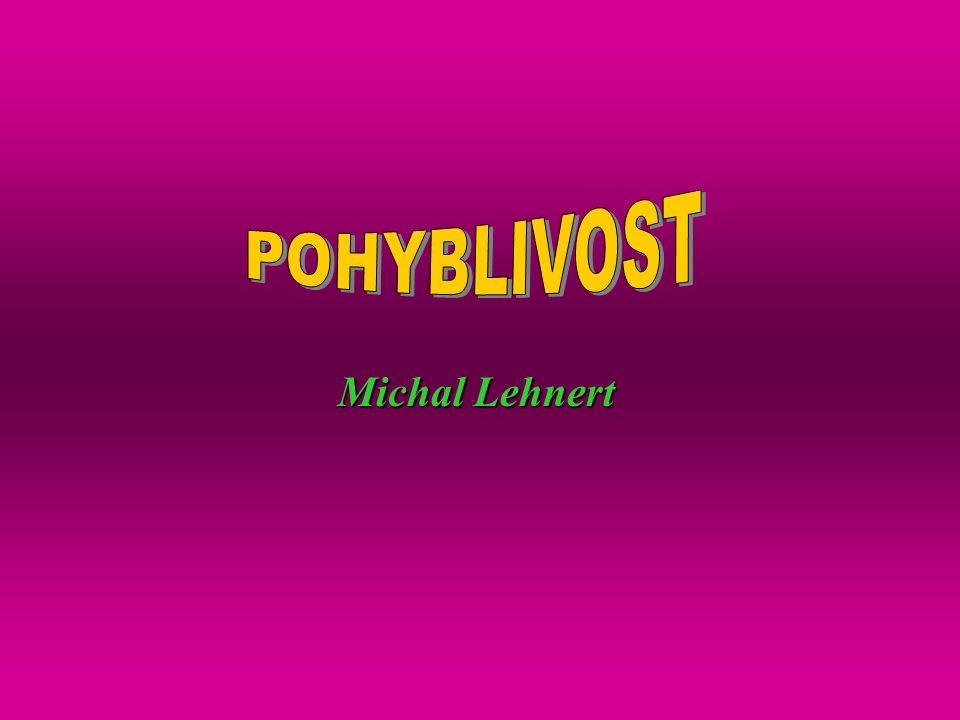 POHYBLIVOST Michal Lehnert