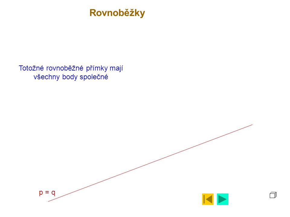 Totožné rovnoběžné přímky mají všechny body společné