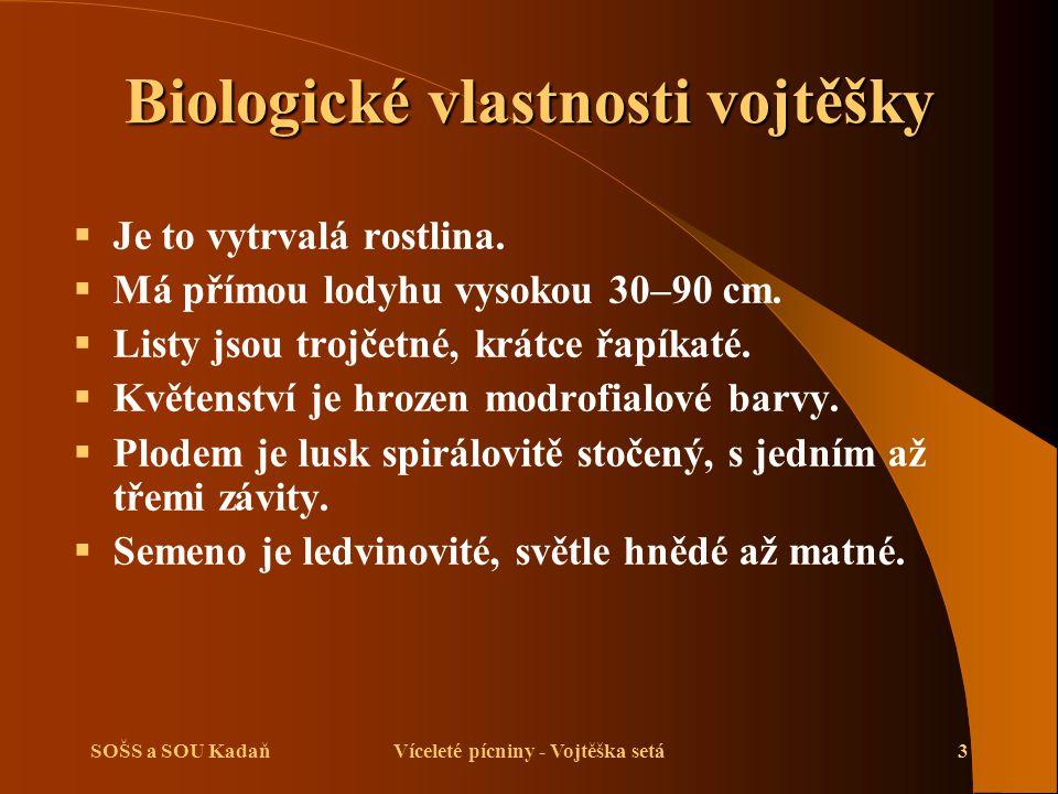 Biologické vlastnosti vojtěšky