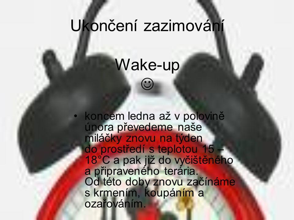 Ukončení zazimování Wake-up 