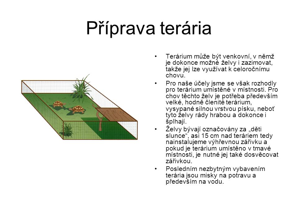 Příprava terária Terárium může být venkovní, v němž je dokonce možné želvy i zazimovat, takže jej lze využívat k celoročnímu chovu.