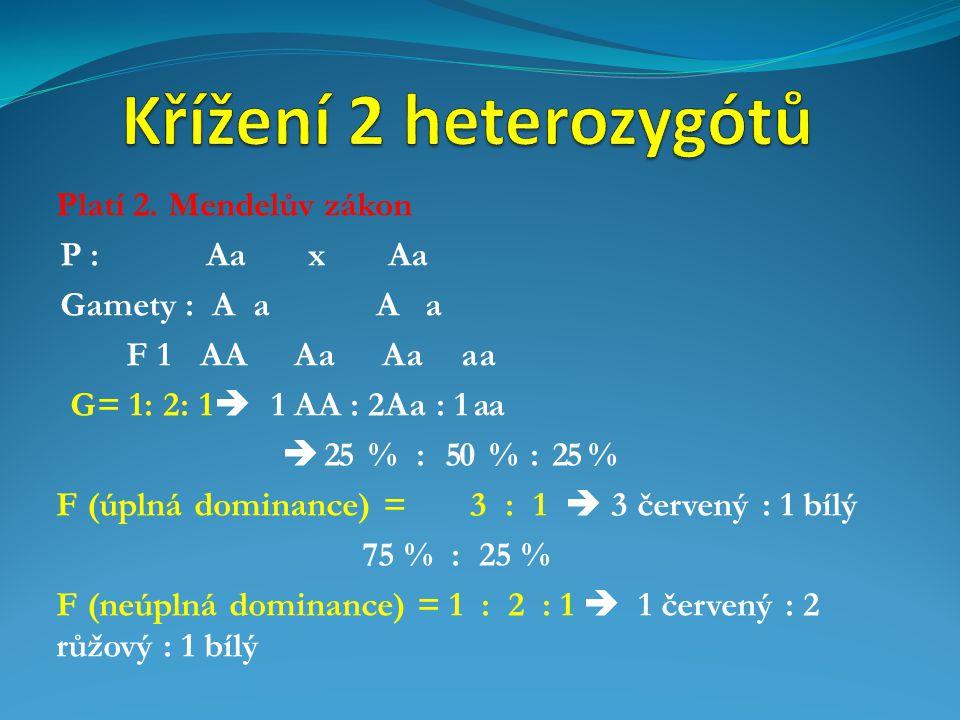 Křížení 2 heterozygótů Platí 2. Mendelův zákon P : Aa x Aa