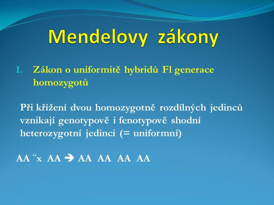 Mendelovy zákony Zákon o uniformitě hybridů Fl generace homozygotů