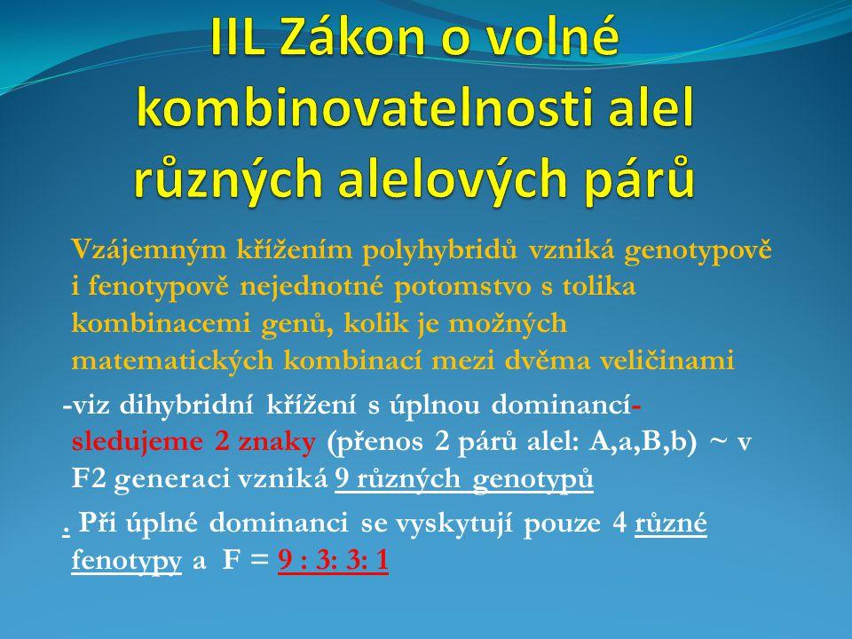 IIL Zákon o volné kombinovatelnosti alel různých alelových párů