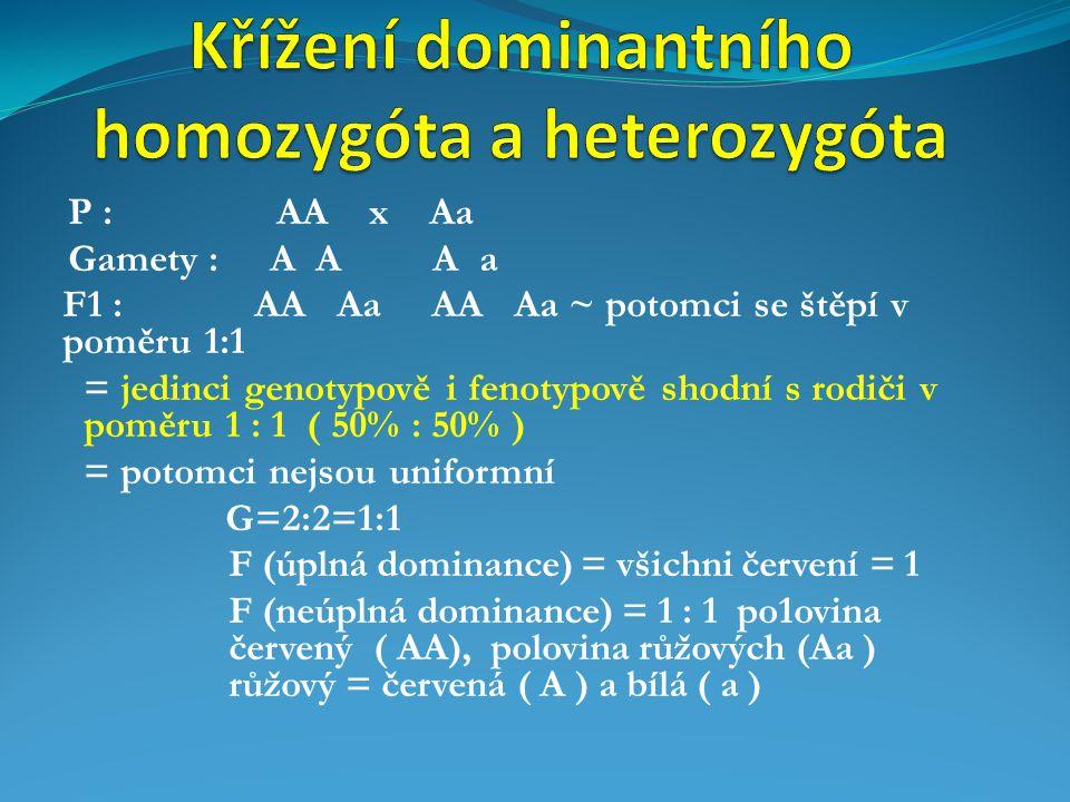 Křížení dominantního homozygóta a heterozygóta
