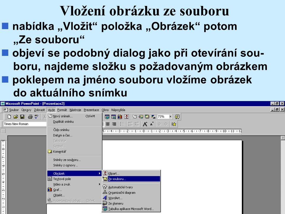 Vložení obrázku ze souboru