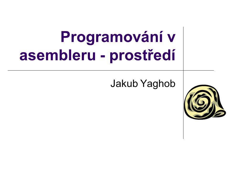 Programování v asembleru - prostředí