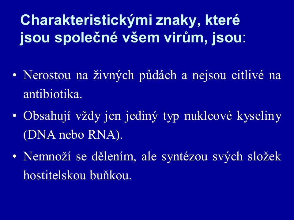 Charakteristickými znaky, které jsou společné všem virům, jsou: