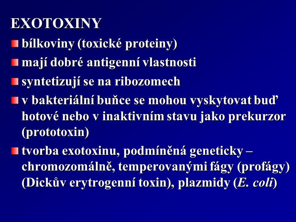 EXOTOXINY bílkoviny (toxické proteiny) mají dobré antigenní vlastnosti