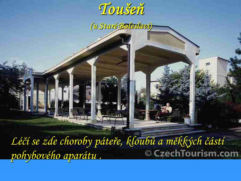 Toušeň (u Staré Boleslavi)