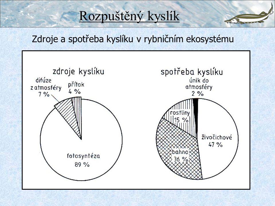 Rozpuštěný kyslík Zdroje a spotřeba kyslíku v rybničním ekosystému