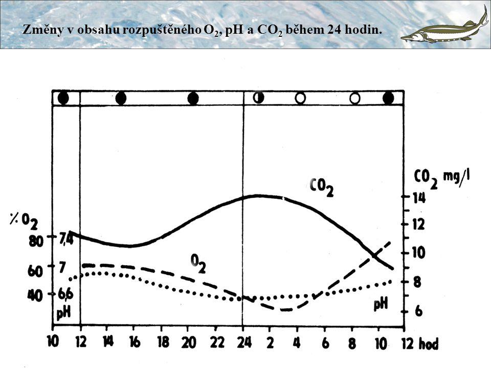 Změny v obsahu rozpuštěného O2, pH a CO2 během 24 hodin.