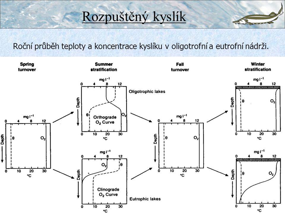 Rozpuštěný kyslík Roční průběh teploty a koncentrace kyslíku v oligotrofní a eutrofní nádrži.