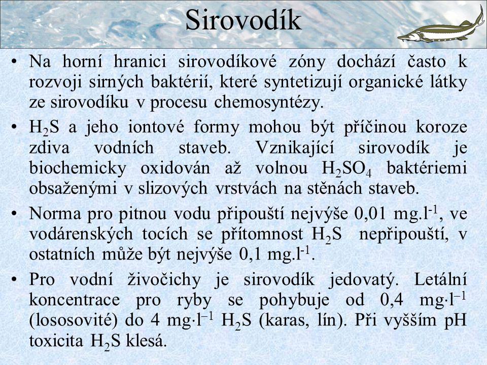 Sirovodík