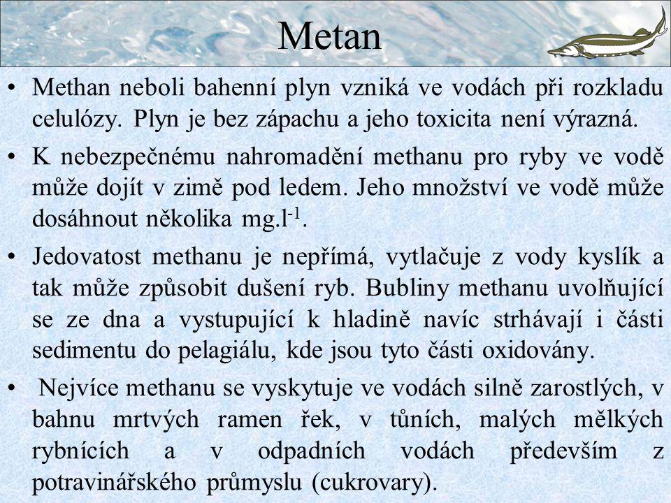 Metan Methan neboli bahenní plyn vzniká ve vodách při rozkladu celulózy. Plyn je bez zápachu a jeho toxicita není výrazná.