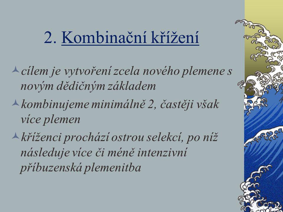 2. Kombinační křížení cílem je vytvoření zcela nového plemene s novým dědičným základem. kombinujeme minimálně 2, častěji však více plemen.