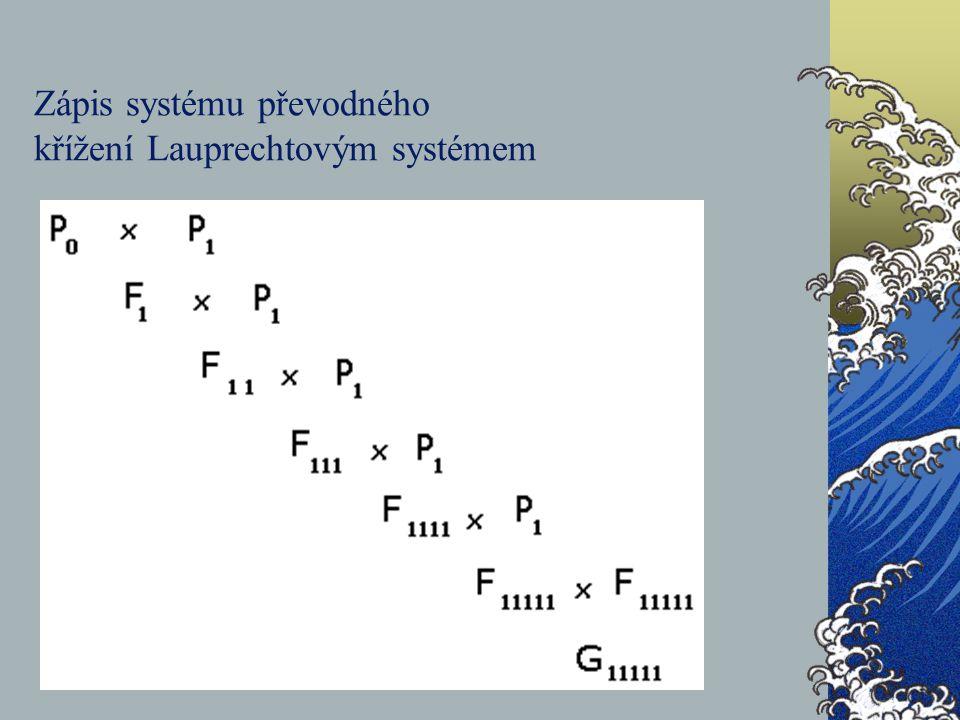 Zápis systému převodného křížení Lauprechtovým systémem
