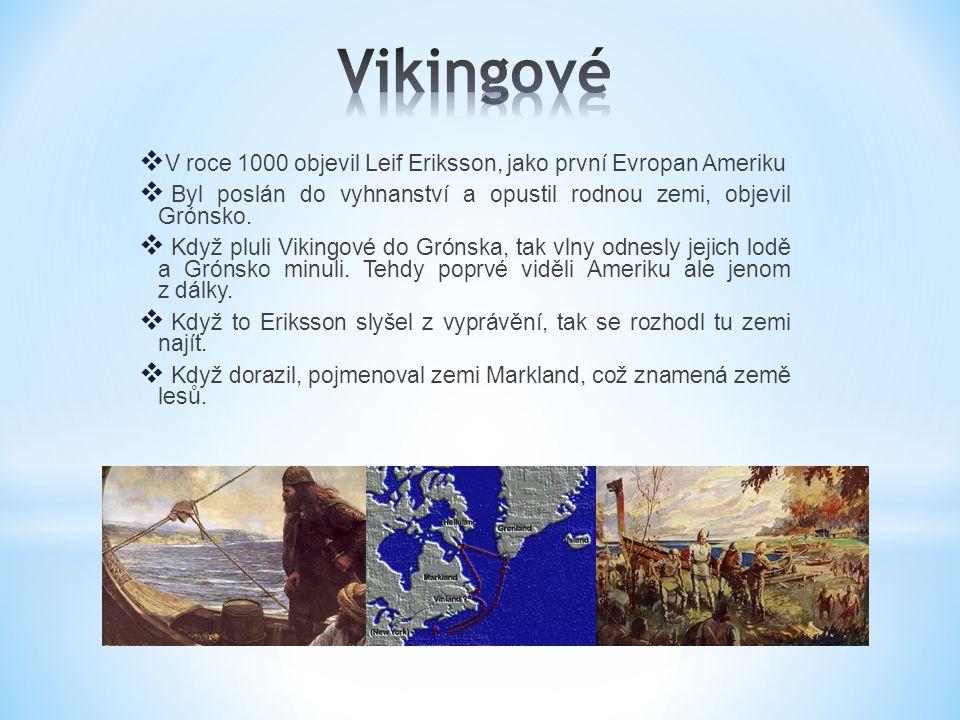 Vikingové V roce 1000 objevil Leif Eriksson, jako první Evropan Ameriku. Byl poslán do vyhnanství a opustil rodnou zemi, objevil Grónsko.