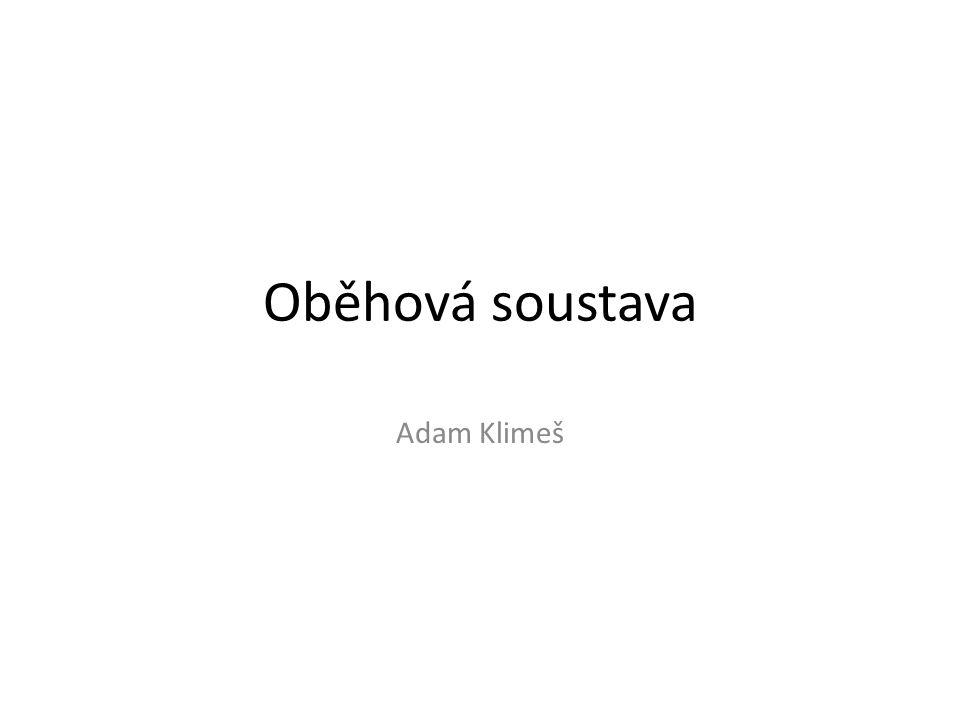 Oběhová soustava Adam Klimeš